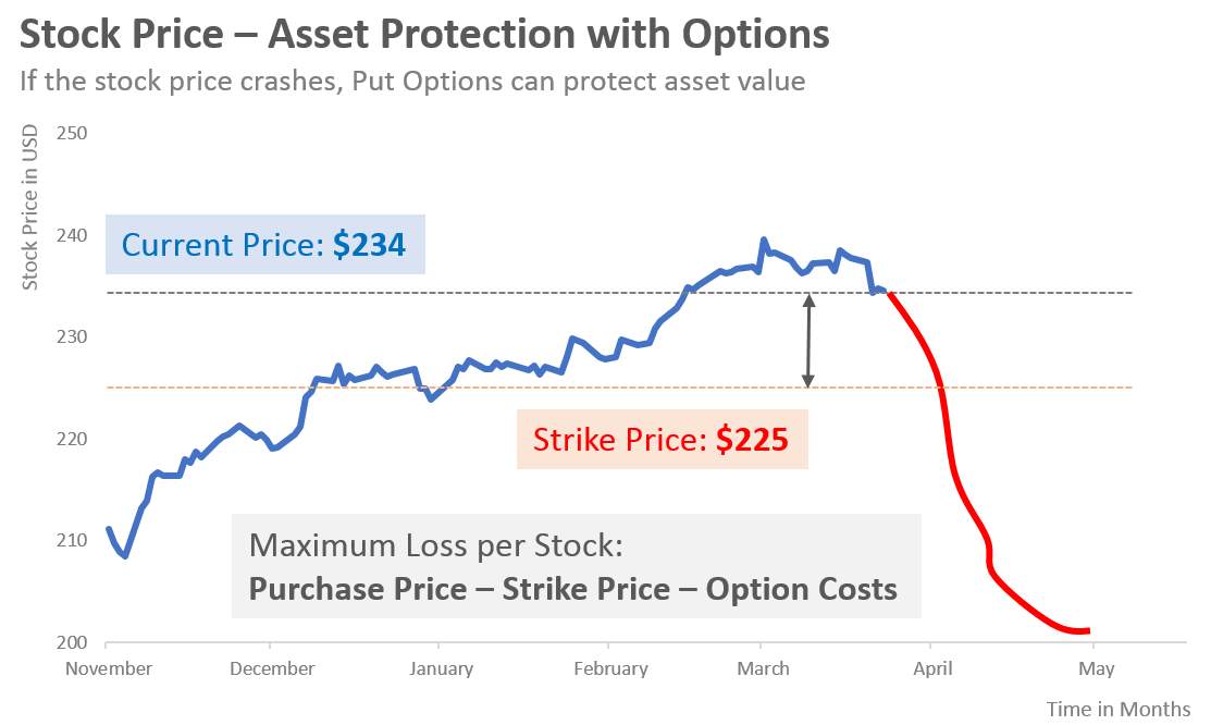 asset protection with options